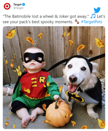 Target_pets costume